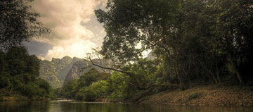 Khao Sok Jungle Taster